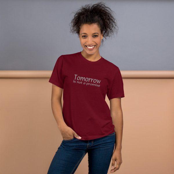 unisex-jersey-t-shirt-cranberry-front-606ba16953458.jpg